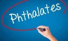 Do Phthalates Cause Cancer and Can We Avoid Them?