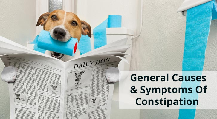 Constipation Causes Symtoms