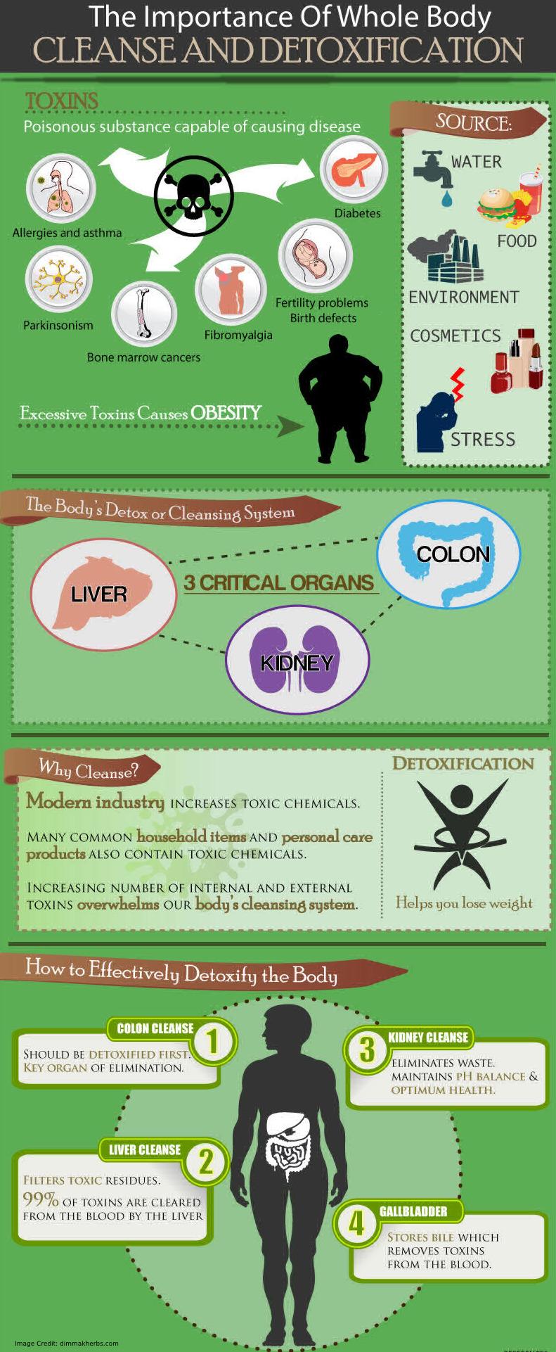 Detoxify The Human Body Info